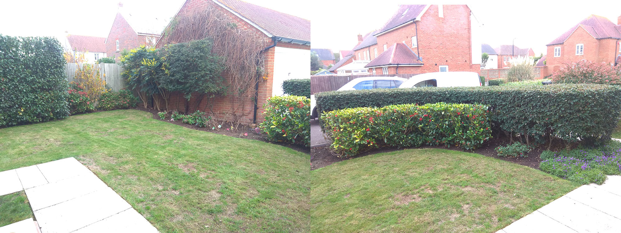 Image of garden after final tidying up before Winter